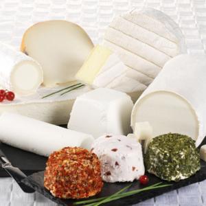 Article-dégustation-comment-choisir-votre fromage-de-chèvre-soignon-sw